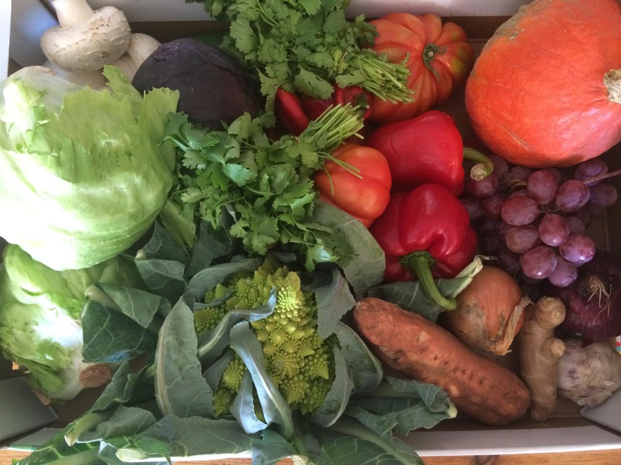 Fruit and veg box Amélie les Bains